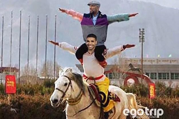 Common Drake
