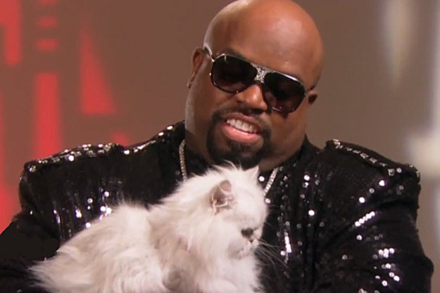 Cee Lo Green Purrfect