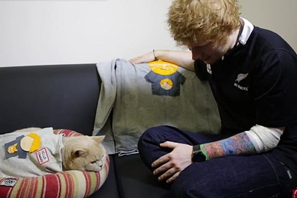 how to get in touch ed sheeran