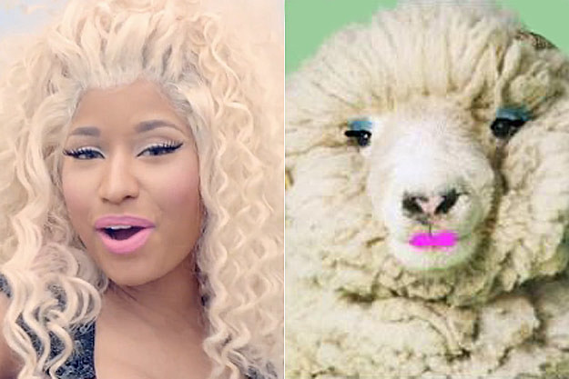 Nicki Minaj Sheep