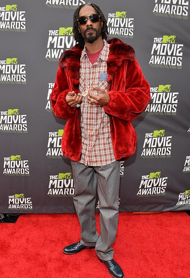 Snoop Dogg 2013 MTV Movie Awards