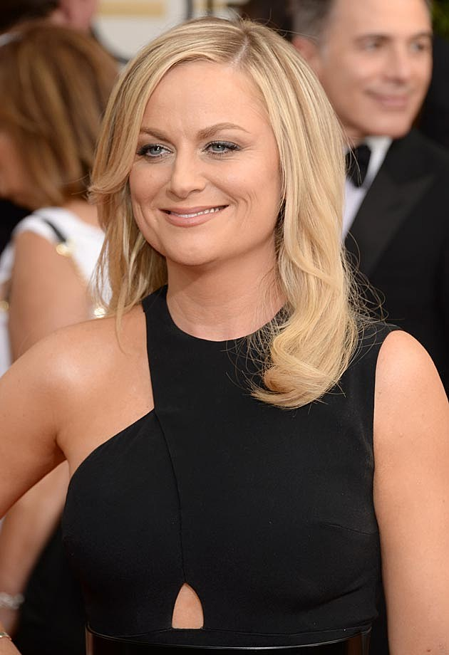 Amy Poehler 2014 Golden Globes