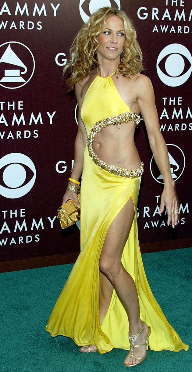 Sheryl Crow 2005 Grammys