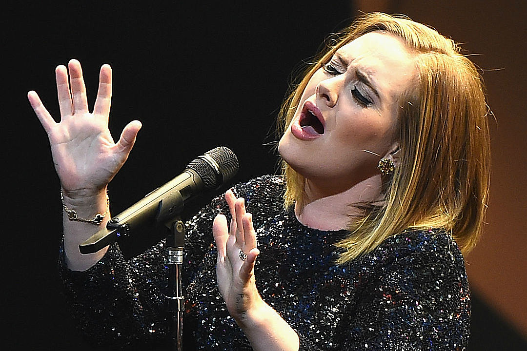 Adele Announces Plans For Baby At Final Tour Stop