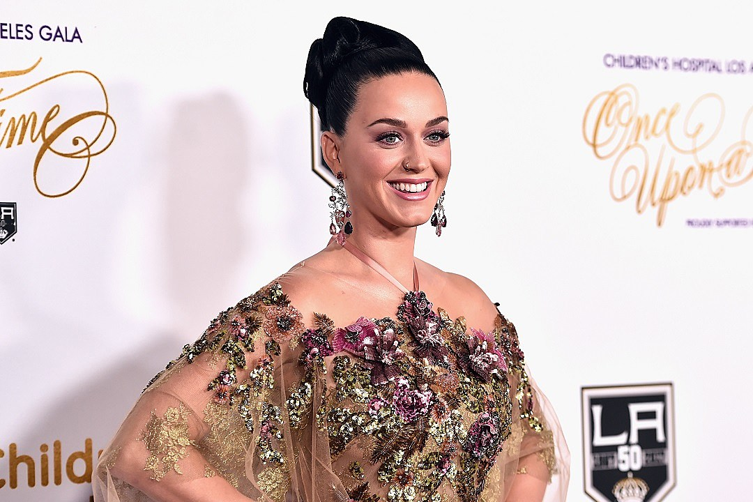 Katy Perry and Orlando Bloom Celebrate Thanksgiving in Onesies