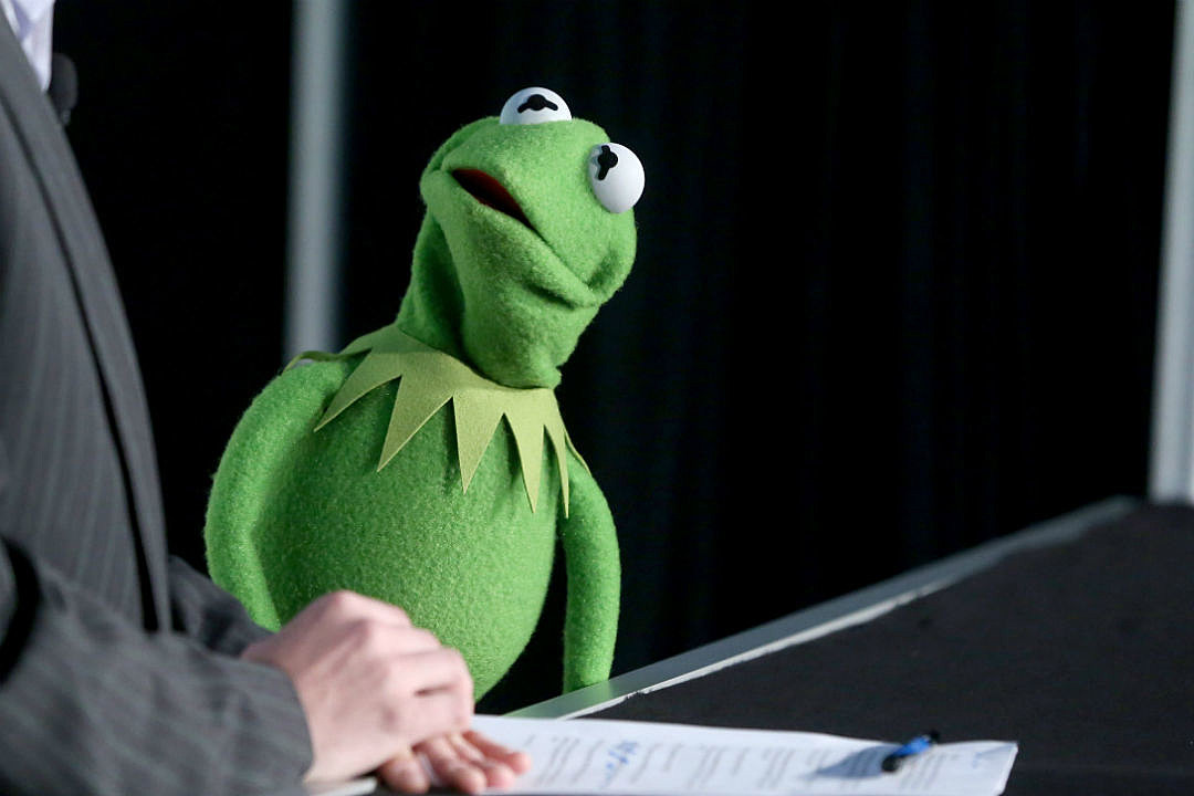 Kermit Fired Devastated