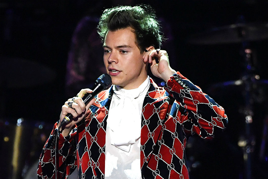 Harry Styles Help Fan With Panic Attack